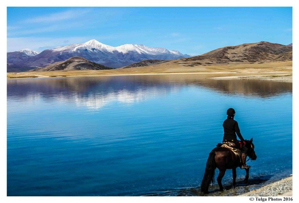 Altay horse ride1