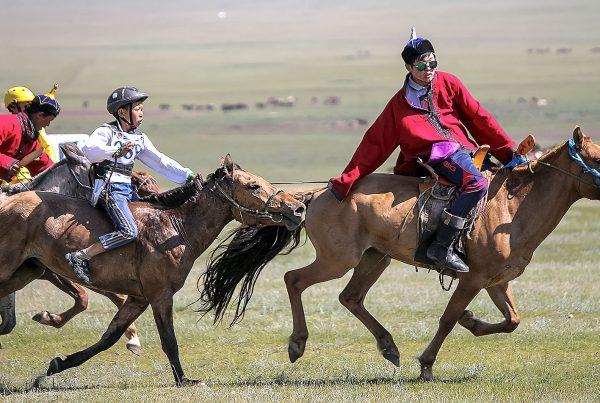 Horse race Naadam Festival