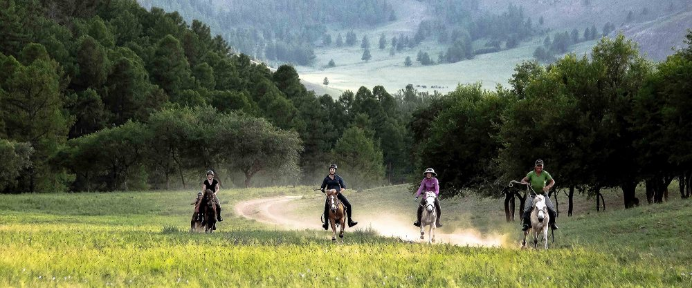 HORSE RIDING TIPS MONGOLIA
