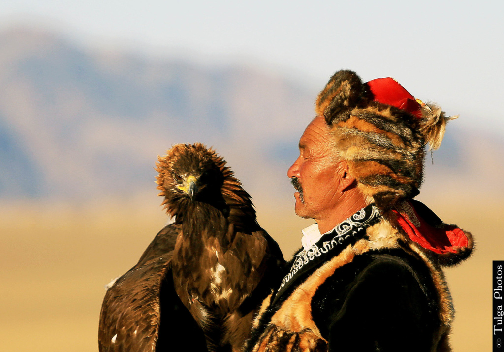 Dalaihaan Eagle Master