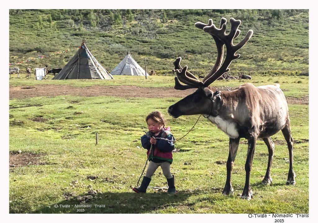 little-reindeer-herder