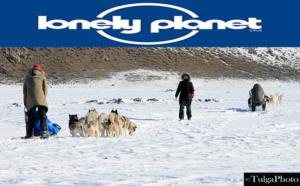 dog sled1