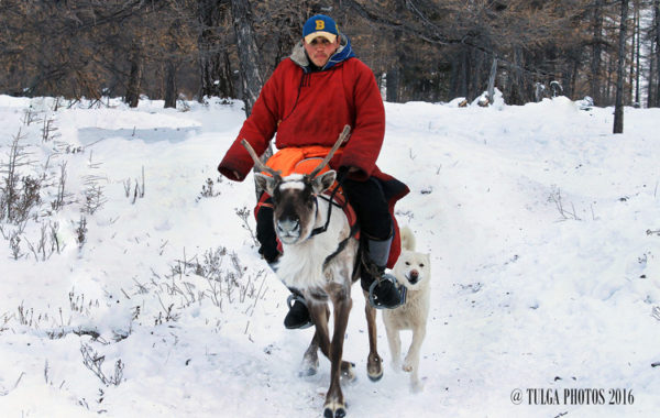herder-of-reindeer-rider