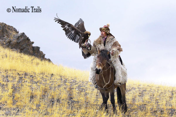 Golden-eagle-hunter-horse-riding