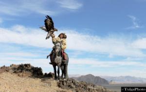 Eagle hunter7