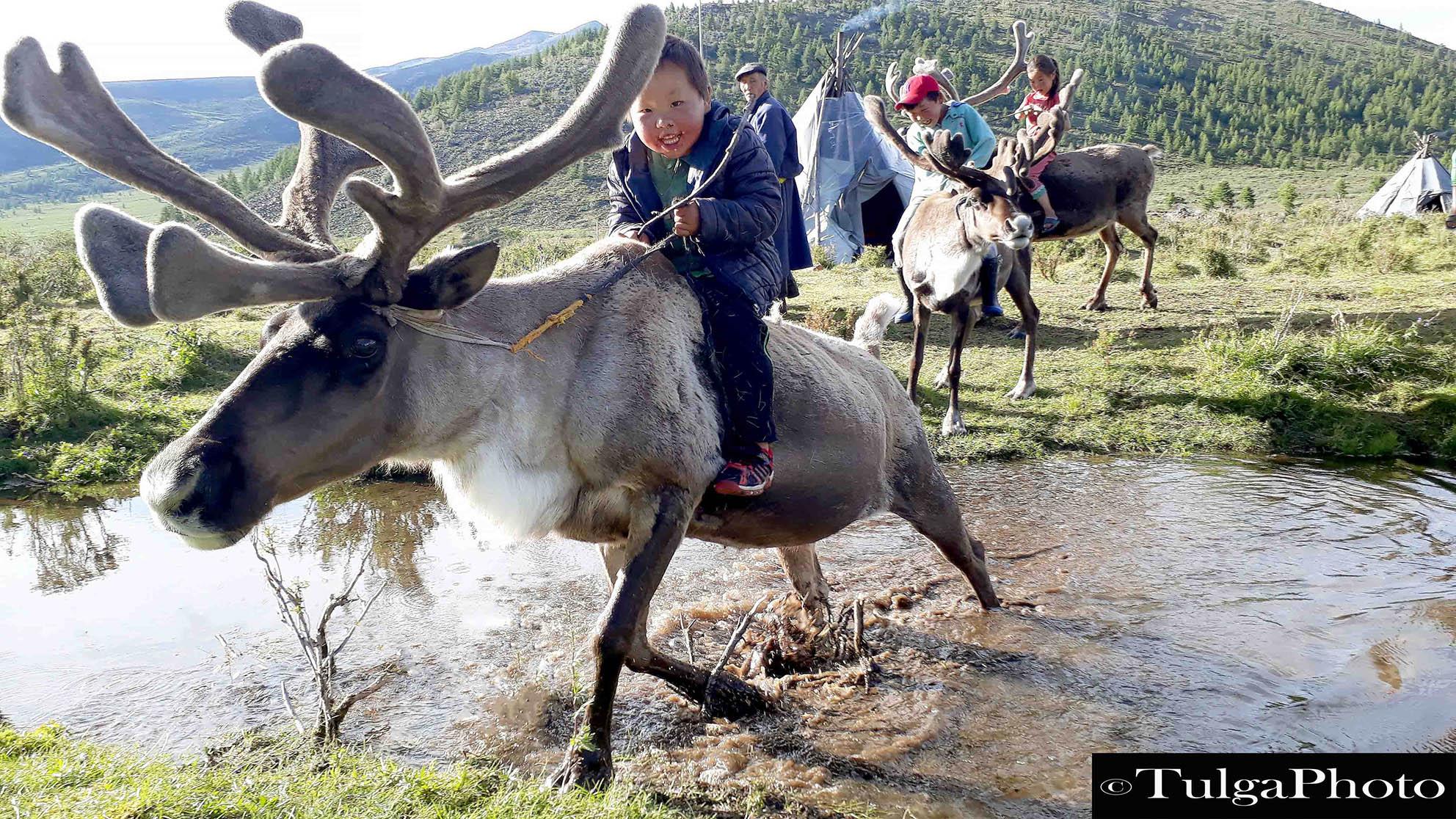 Reindeer rider crossing water