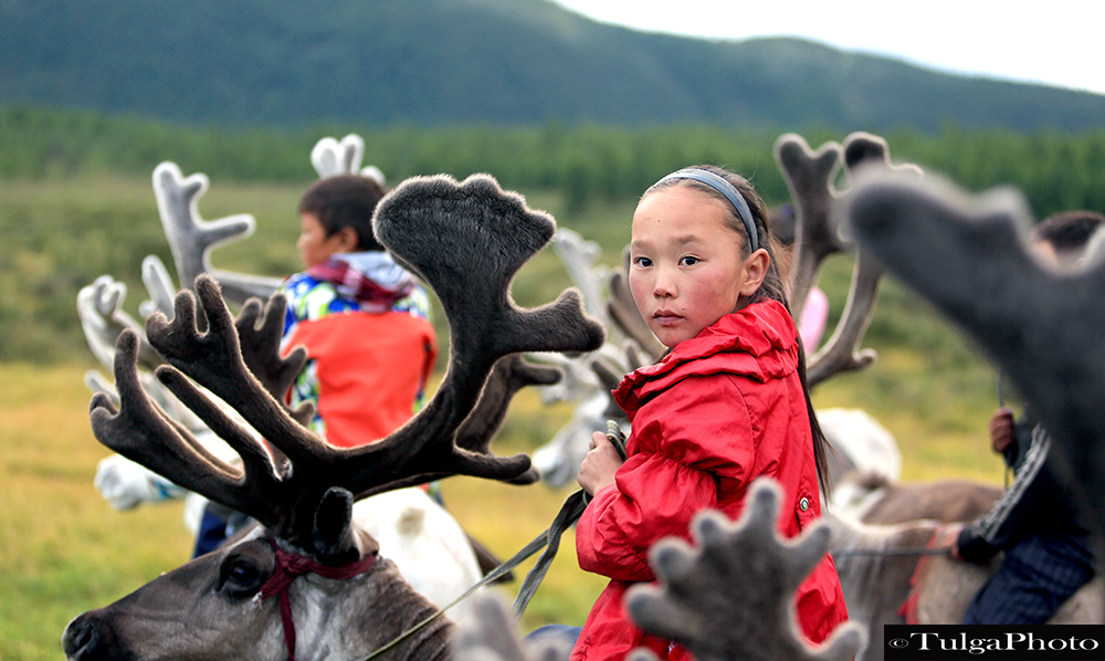 Reindeer children1