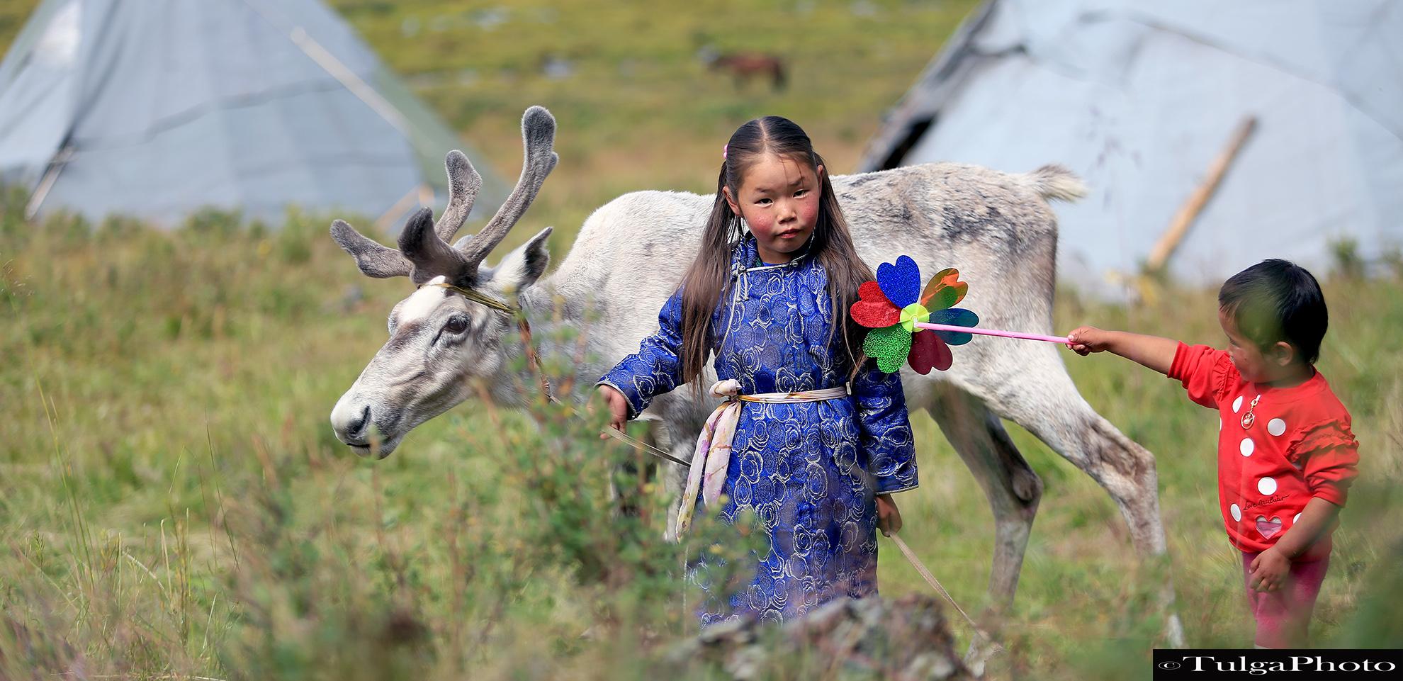 REINDEER HERDERS or TSAATAN TRIBE in TAIGA, NORTH MONGOLIA