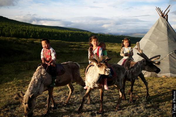 Reindeer children13