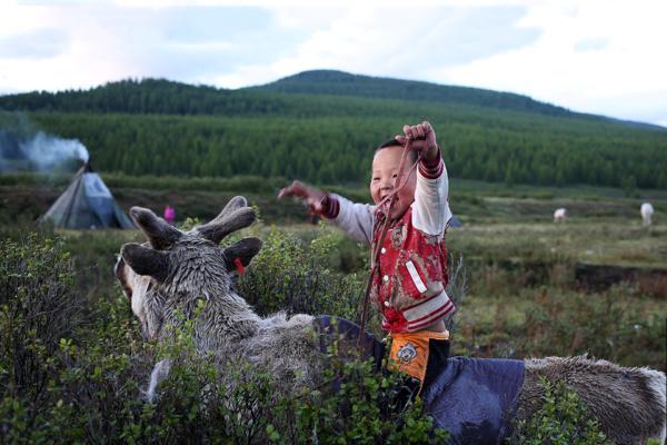 Reindeer children14