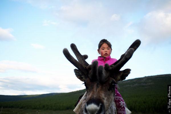 Reindeer children15
