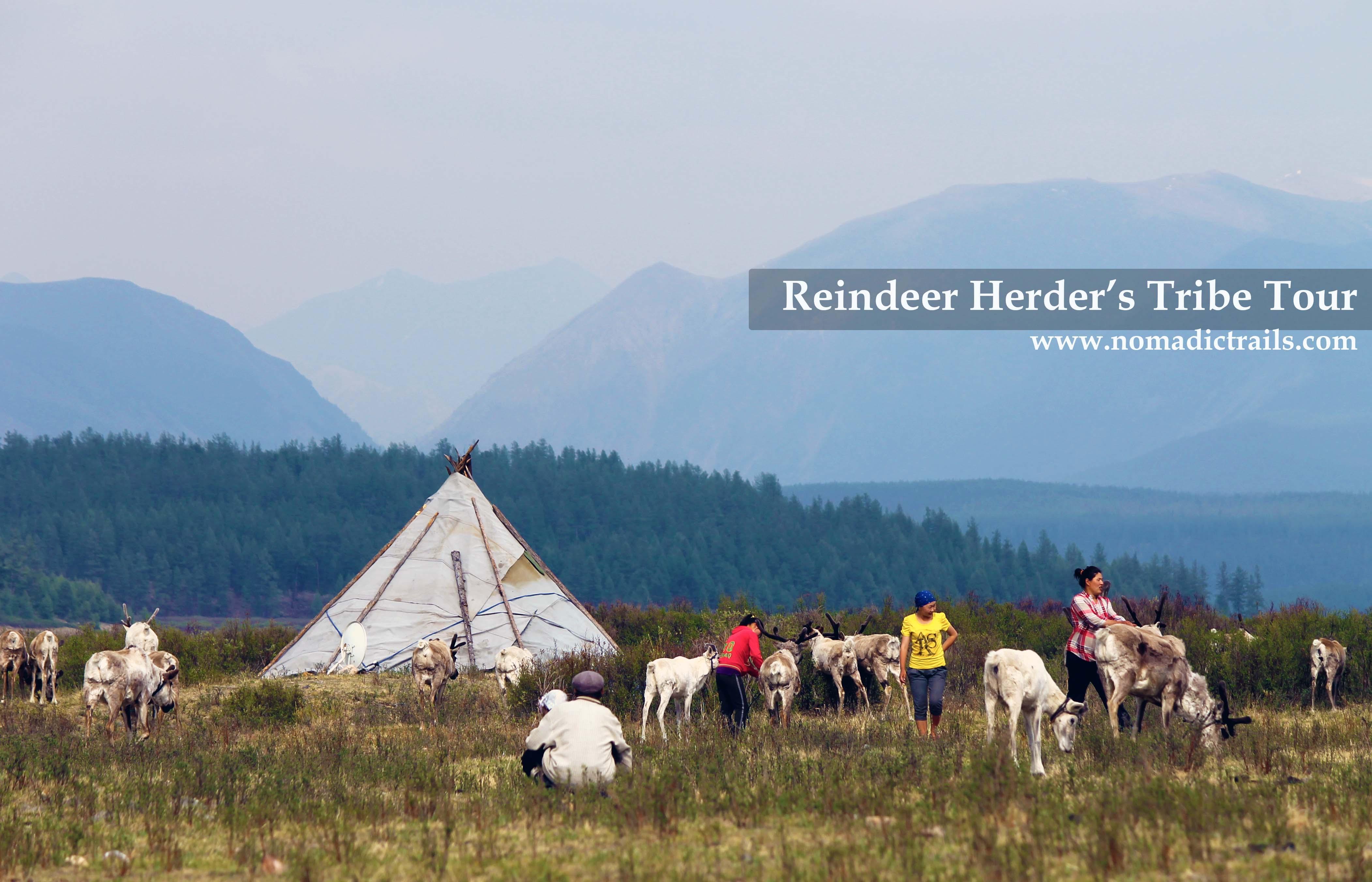 Reindeer Herder's Tour