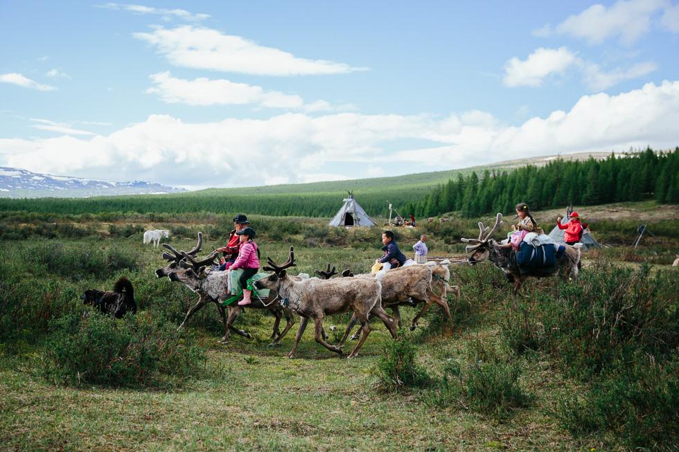 MAGICAL MONGOLIA- Reindeer herder's visit by SANDRA HENRI 2018