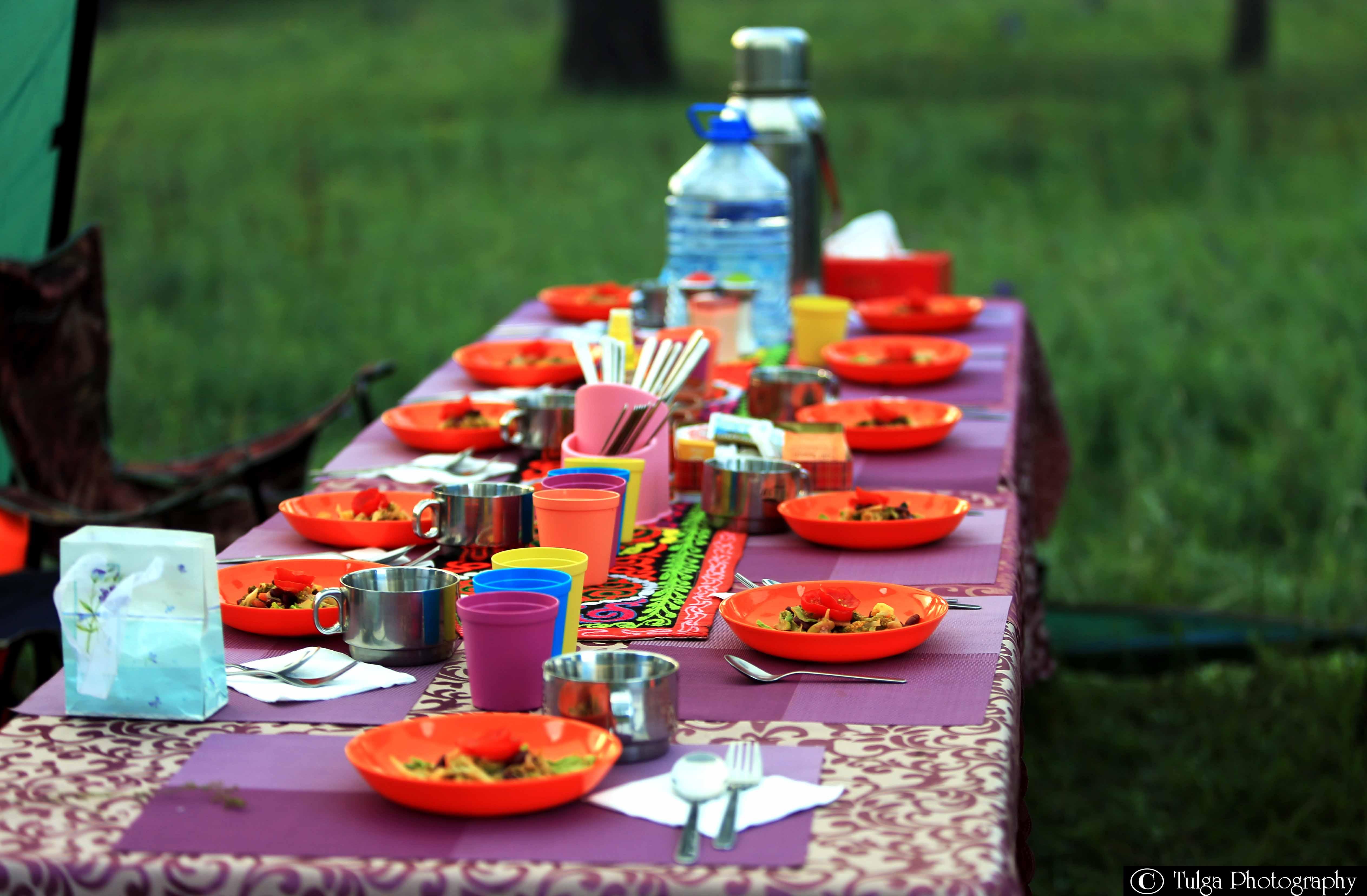 Tsaatan Reindeer Tribe visit meal