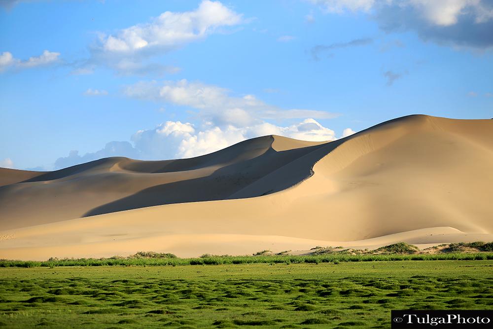 Kkhongor Sand Dunes