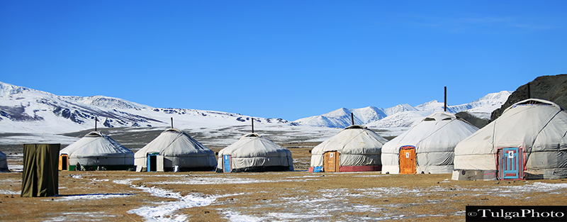 Altay ger camp