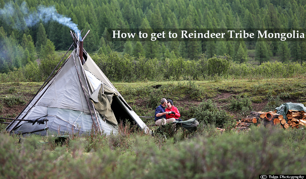 How to get to Reindeer Tribe