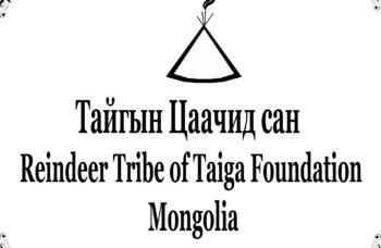 Logo Taiga Tsachid