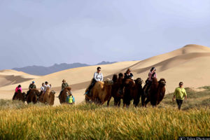 Riding camels on Gobi Tour in Mongolia