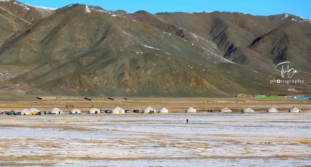 Local Golden Eagle Festival ger camp