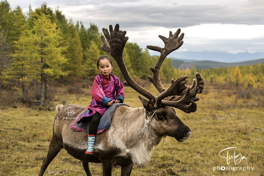 Tsaatan Tribe Girl riding reindeer
