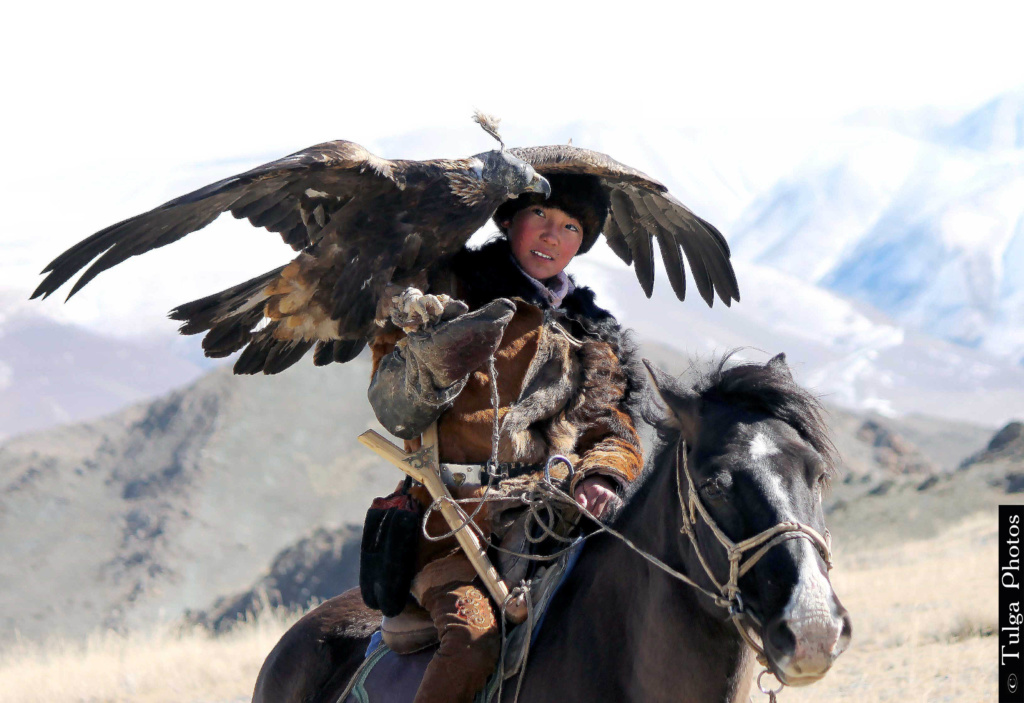 Young Golden Eagle Huntress with her trusted eagle