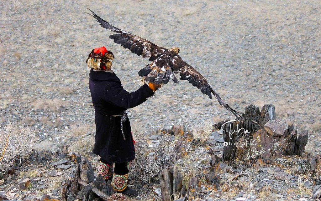 Main Golden eagle festival flying eagle2