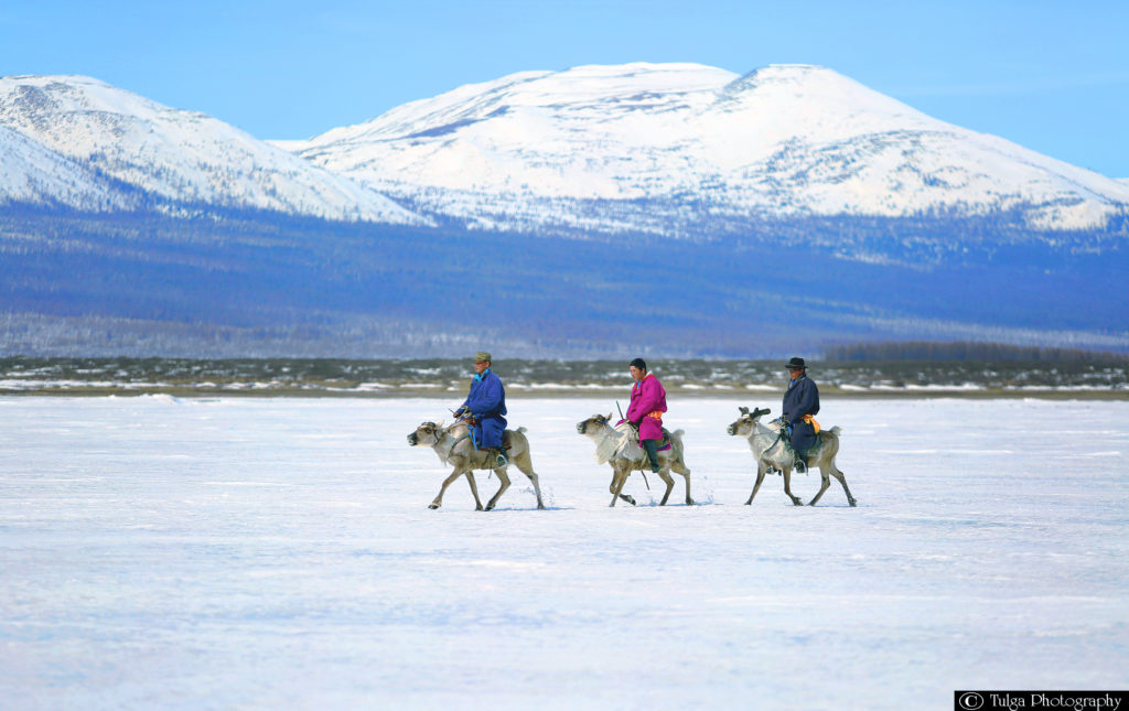 Winter Tour Mongolia- Reindeer Herder