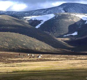 Spring camp for reindeer