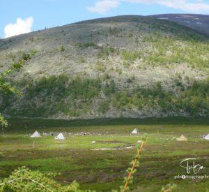 Summer camp of Taiga