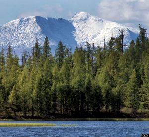 Mongolian Taiga mountainous scenery