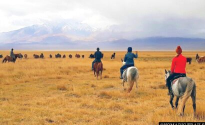 horse riding tour northern Mongolia