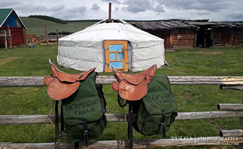 nomadic trails horse riding saddle