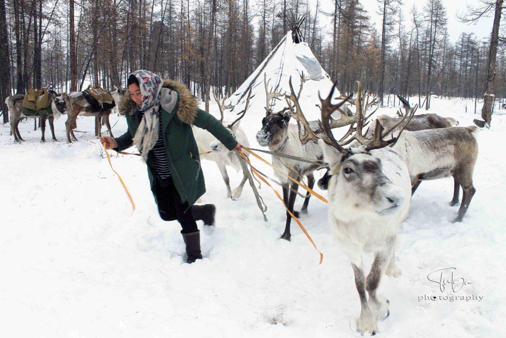 Reindeer Tribe Winter camp