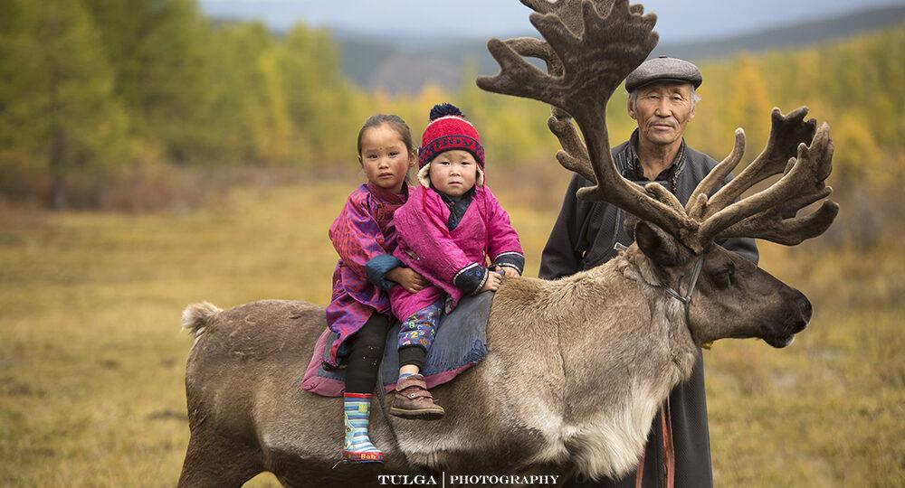 Reindeer Herders Tribe Mongolia