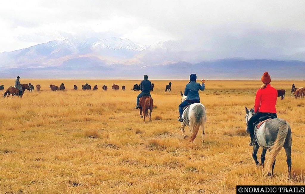 horse riding tour Mongolia | How to visit the Mongolian Reindeer Herders - Nomadic Trails