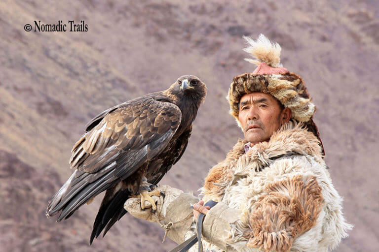 Golden Eagle Hunter with eagle gazing into the distance