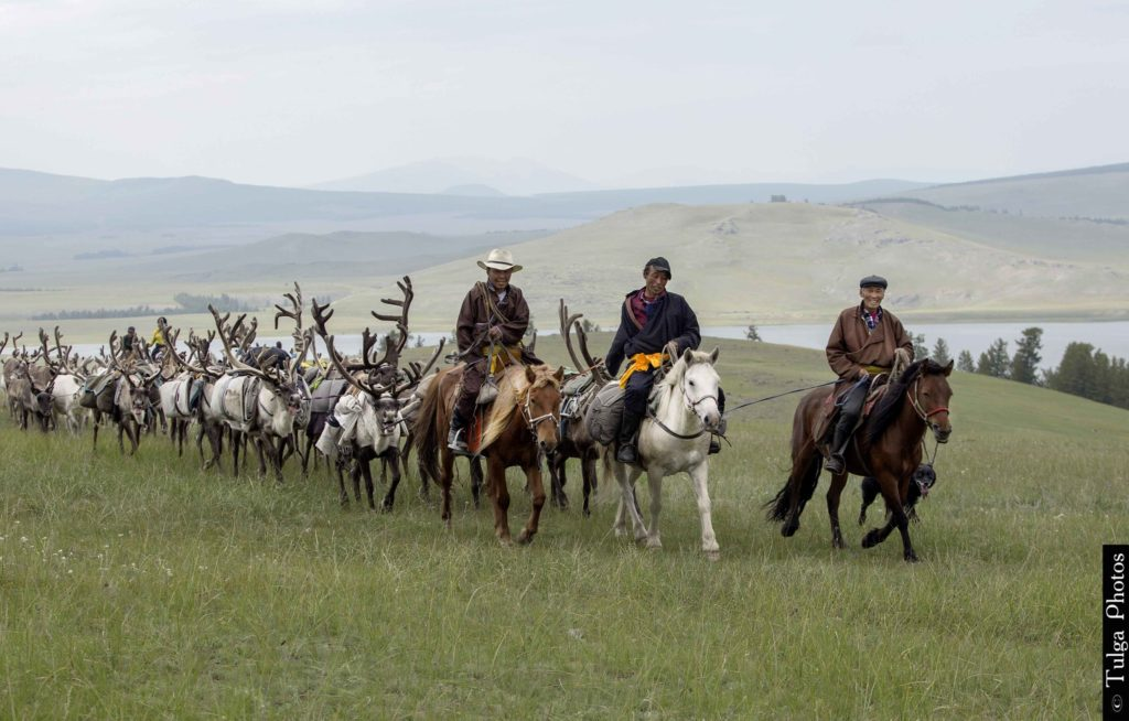 Riding to the Reindeer Festival 2019 | Reindeer Festival Mongolia 2019 - Nomadic Trails