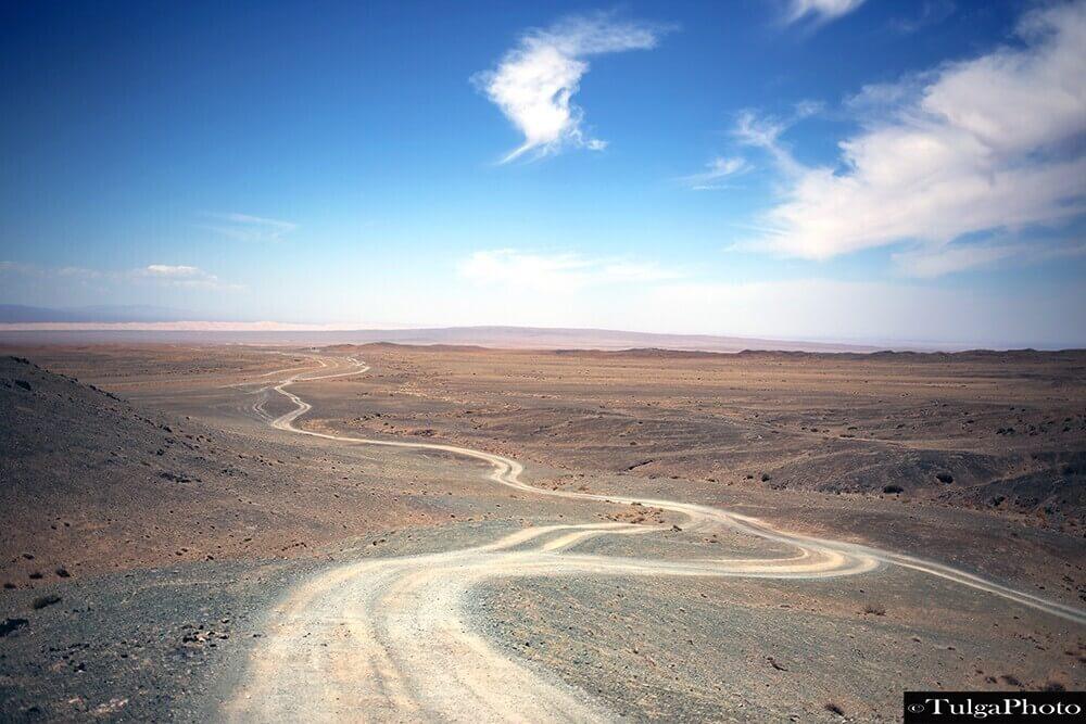 Mongolian Gobi road